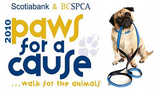 paws for a cause 2010 banner